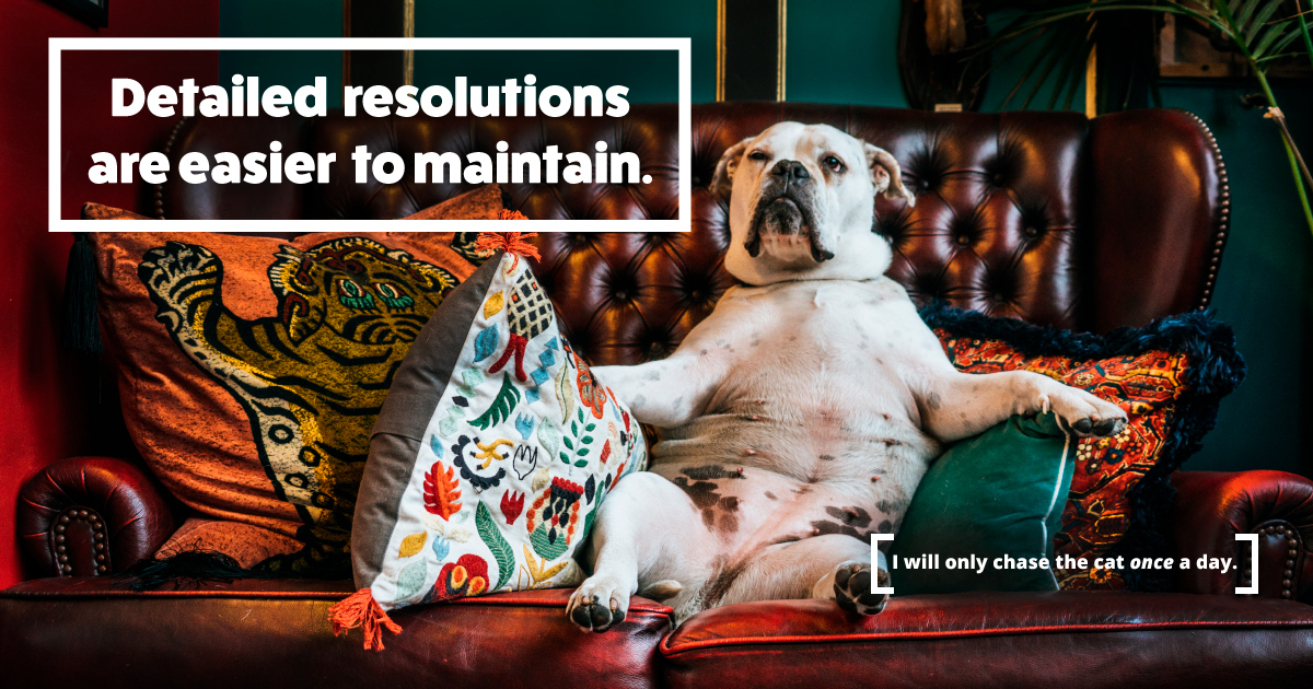 Detailed resolutions are easier to maintain. A dog says, I will only chase the cat once a day.